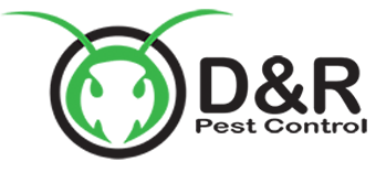 d-r-pest-logo